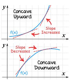 What are Convex and Concave Curves? - Stat Mania English