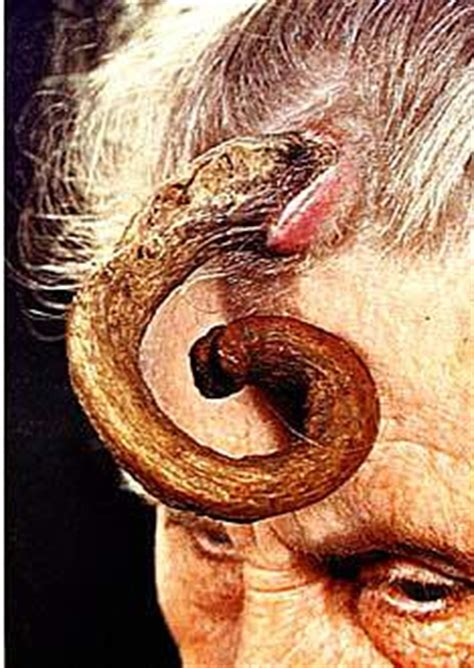 Horn Lady - Picture | eBaum's World