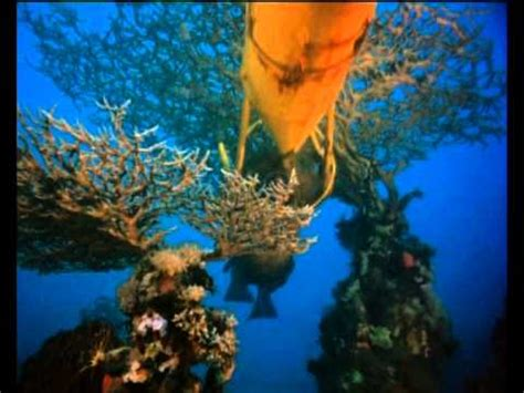 The Cousteau Collection - The Silent World - Trailer - YouTube