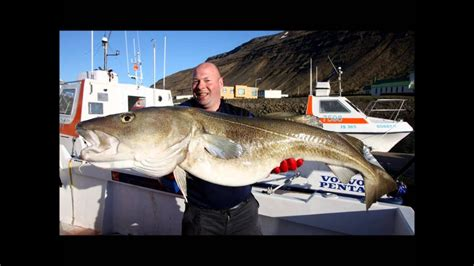 Worlds Largest Fish! (Cod, Halibut, Ling and some other