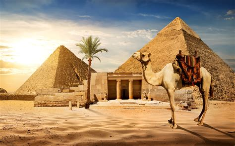 Download wallpapers Egypt, Cairo, pyramids, tourism